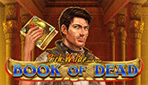 slot book of the dead play n go
